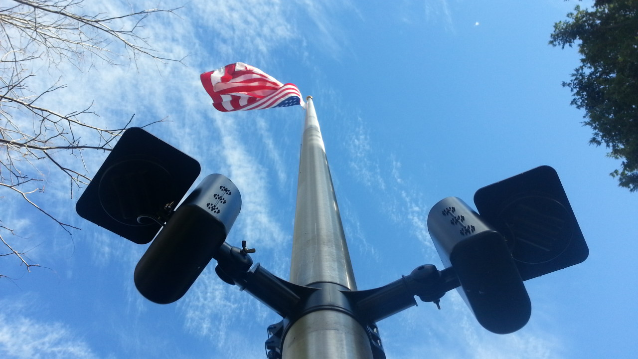 Polepal Solar Lighting System Flagpole